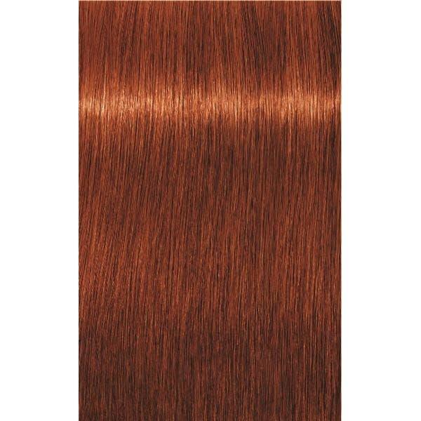 Igora Royal Крем-Краска Для ВолосКраски для волос<br>Профессиональная классика в окрашивании волос  Максимальное впечатление  До 100  покрытия седины  Ультрастойкость цвета  Интенсивная яркость цвета  Идеальное равномерное покрытие даже на пористых волосах  Чистые оттенки и улучшенный уход  Полное соответствие образцам в палитре<br>Type: № 6-77 тёмно-русый медный экстра 60 мл;